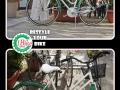 regina-verde-bianco_small